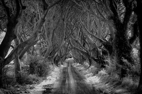 сказочная дорога